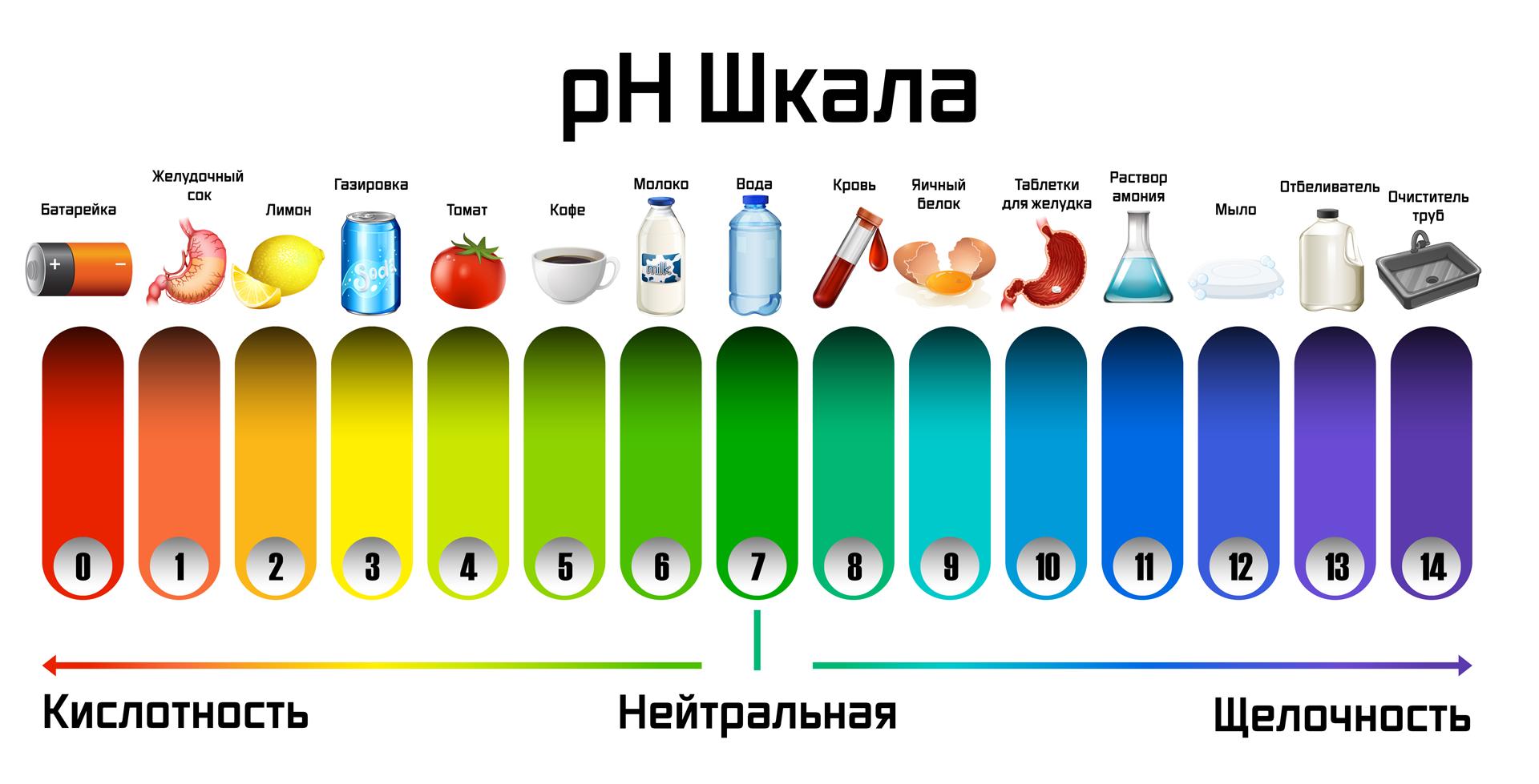 Шкала pH щелочность и кислотность