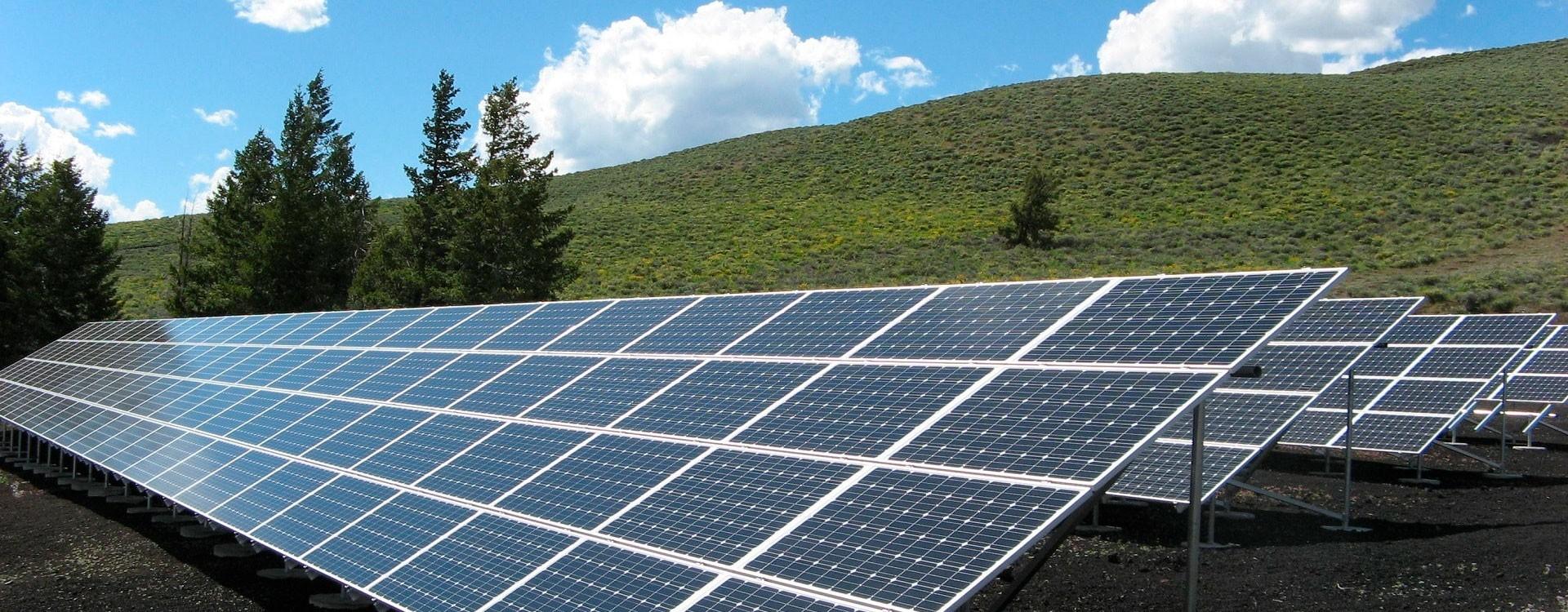 Питательные вещества в почве и уровень pH