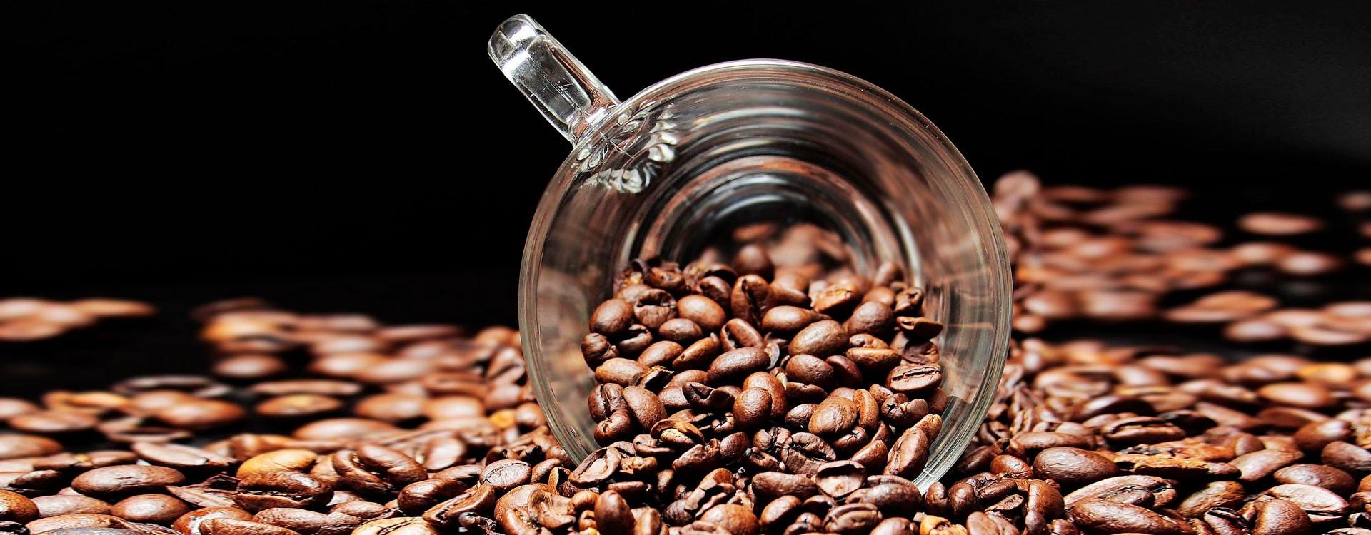 Контроль качества воды при разведении рыбы