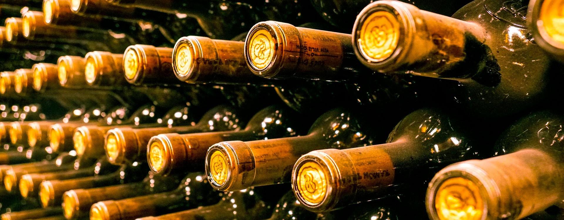 От Оккиолино до Титана: эволюция, разновидности и предназначение современных микроскопов