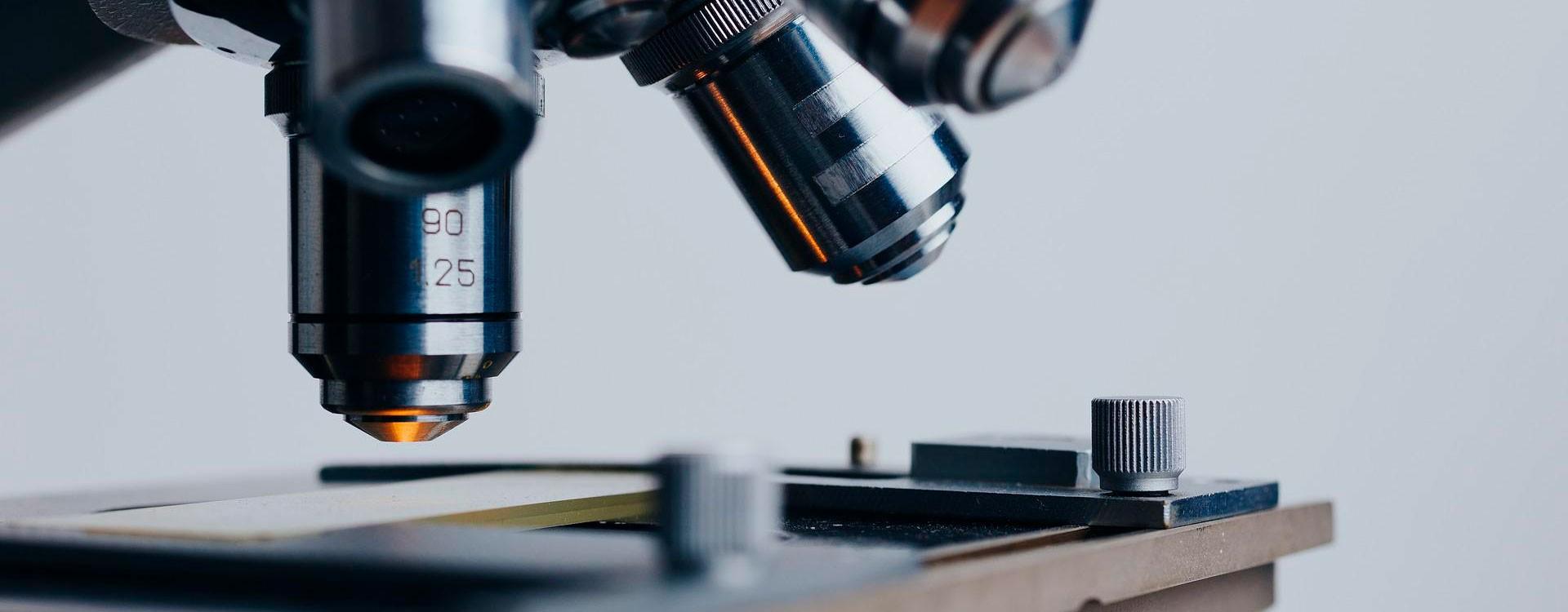 Бизнес без потерь: эффективность использования влагомера зерна Фауна-АМ и других измерителей влажности серии Фауна